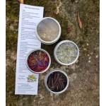 Quatuor d'épices florales et boréales